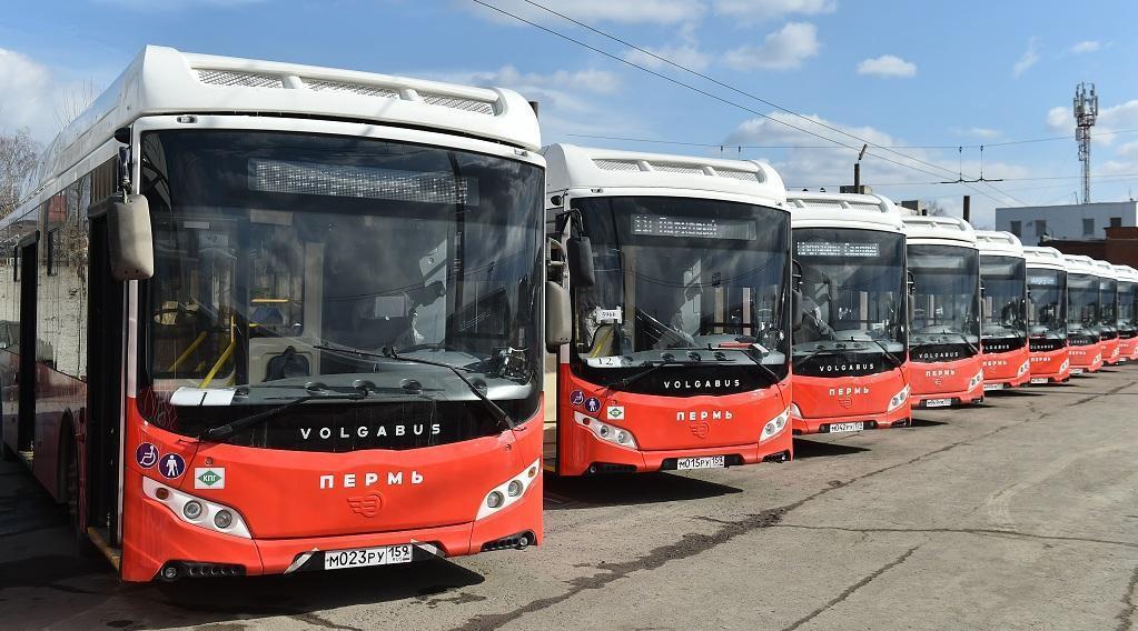 В Перми запускают новый автобусный маршрут №50